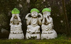 Trio (Midse) Tags: 日本 トリップ 観光 japan travel trip canon sighseeing statue green miyajima 緑 宮島 shrine