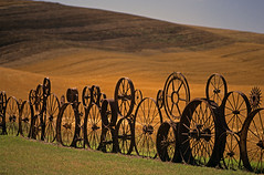 Farm fence made up of metal wheels Eastern Washington Union Town Washington State USA (Jim Corwin's PhotoStream) Tags: palouse easternwashington washingtonstate farm farming field fence metal metalfence wheel metalwheel metalwheels wheels spokes eccentric unusual weld welded wagonwheels old design crops agriculture nobody outdoors photography horizontal pacificnorthwest travel scenic tourism localattractions sightseeing rollinghills row rows pattern manmade uniontown