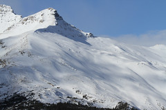Montagne (MetallYZA) Tags: 2016 canada alberta jasper montagne mountain snow neige rockies rocheuses icefieldsparkway promenadedesglaciers columbiaicefield