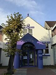 Eastleigh Museum (Wider World) Tags: england hampshire eastleigh museum highstreet pillar tree pollard