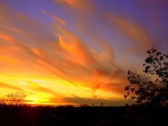 New York Sunset (dimaruss34) Tags: newyork brooklyn dmitriyfomenko image fall autumn sky clouds sunset