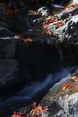 Troodos Geopark (21) (Polis Poliviou) Tags: polispoliviou polis poliviou   cyprus cyprustheallyearroundisland cyprusinyourheart yearroundisland zypern republicofcyprus  cipro  chypre   chipir chipre  kipras ciprus cypr  cypern kypr  sayprus kypros polispoliviou2016 troodosgeopark troodos mediterranean nicosia valley life nature forest historical park trekking hiking winter walking pine pines prodromos limassol paphos fall autumn geopark kakopetria