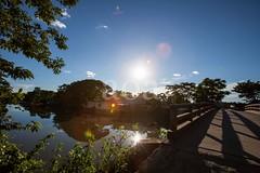 5D8_7396- (bandashing) Tags: blue sky sunshine sun sunlight lens glare water monsoon trees shade shadow reflection landscape village madarbazar balagonj sylhet manchester england bangladesh bandashing socialdocumentary aoa akhtarowaisahmed