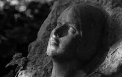 Eternal Sleep (AnyMotion) Tags: sculpture skulptur face gesicht tombstone grabstein sunshine sonnenschein leaf blatt bokeh cemetery 2015 frankfurt anymotion maincemetery hauptfriedhof hessen germany 7d2 canoneos7dmarkii bw blackandwhite sw autumn fall herbst automne otoo