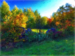 Autumn's farewell... (Sherrianne100) Tags: awardtree colorful trees quebeccity canada autumn
