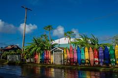 Surfboard Retirement Home :) (Patricia Colleen) Tags: surfboardfence baldwinavenuepaia paia maui magiclight colourful rgb