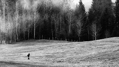 Over the east Hills (Swiss.Piton (BH&SC)) Tags: toggenburg ostschweiz olympusomdem5miizuikom75mmf18 olympusomdem5ii olympus75mmf18microfourthirdslens blackandwhite schweizerphotographen schweiz schwarzundweiss people wanderung