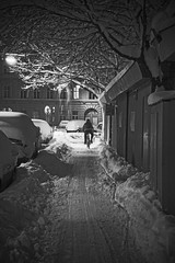 Risky (CoolMcFlash) Tags: winter snow street streetphotography vienna bw blackandwhite bicycle ride night lights cold person canon eos 60d tamron b008 18270 tree bike schnee strase wien sw schwarzweis fahrrad rad fahren drive nacht lichter city stadt kalt baum fotografie photography