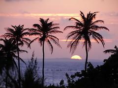 feels like there's something broken inside. (Lívia.Monteiro) Tags: ocean sunset sun beach nature brasil natureza silhouettes pôrdosol silhuetas