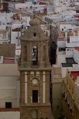 Cdiz, torres / towers (Jos Rambaud) Tags: cathedral towers catedral roofs cadiz tejados torres torredelreloj