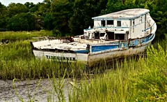 Tiderunner - Gay Fish Co.- Frogmore SC (Meridith112) Tags: wood old summer 1948 abandoned sc boat nikon south southcarolina august beached marsh lowtide fishingboat beaufort seagrass shrimpboat oldboat lowcountry carolinas 2015 washedashore frogmore princeoftides frogmorestew nikon2485 gayfishco tiderunner nikond610 captainbustergay
