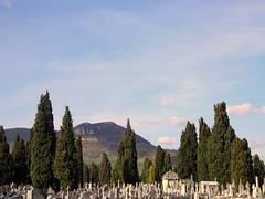 Lachaise à Laplage (2010) (flarvis) Tags: ciel paysage colline millau causse cimetière aveyron tombes cyprès stelles