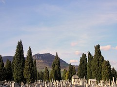 Lachaise  Laplage (2010) (flarvis) Tags: ciel paysage colline millau causse cimetire aveyron tombes cyprs stelles