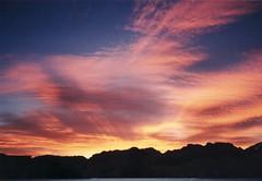 1999-11-Schaapenberg-09 (fjordaan) Tags: southafrica 1999 scanned sa somersetwest schaapenberg