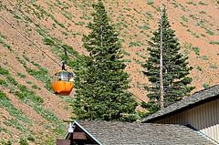 Colorado Vacation Day 10 - Colorful Gondola Rides (Jayhawk Explorer) Tags: colorado colorful co gondola day10 tramway coloradovacation monarchpass ipiccy thiswaytoawesomeviews monarchcresttramway