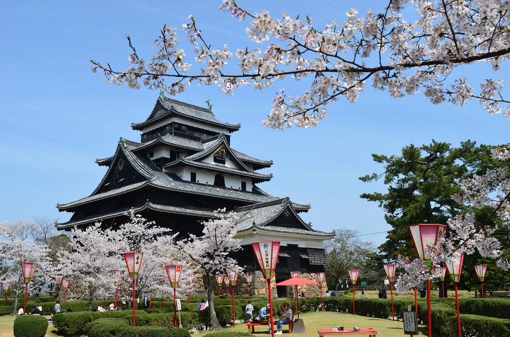 matsue-castle-hanami-cherry-blossoms-festival-most-beautiful-japanese-castle