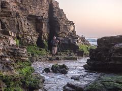 Photographers (dicktay2000) Tags: focus sydney australia warriewood richardtaylor 20151003pa034989