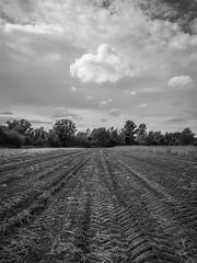 Cloud (Ivan Vranić hvranic) Tags: autumn bw clouds epl1 olympus17mm 201510 olympus17mm18
