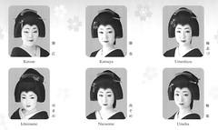Kitano Odori 2009 017 (cdowney086) Tags: geiko geisha katsue katsuya 芸者 芸妓 kamishichiken 上七軒 kitanoodori 北野をどり 勝江 umeha hanayagi ichimame umeshizu naosome 花柳流 市まめ 梅志づ 尚そめ 梅葉 勝也