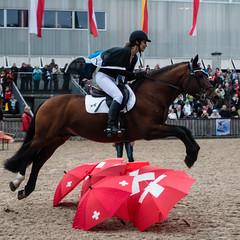 Springreiten (swissgoldeneagle) Tags: red horses horse saint st umbrella schweiz switzerland rod umbrellas stgallen olma pferde gallen pferd ch sankt gall schirme sanktgallen stgall schirm saintgall rx100 rx100m4