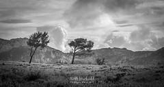 landscape-56 (Alain Bachellier) Tags: provence 13 paysages bouchesdurhone