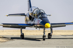 L 39 Albatros (10) (Indavar) Tags: plane airplane airshow chipmunk mustang albatros rand beech at6 radial an2 p51 l39 antonov dc4 dhc1 beech18 t28trojan b378