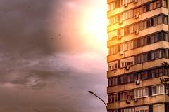 Flying south (Master Iksi) Tags: birds sky building structure architecture novibeograd newbelgrade canon 700d city flying light srbija serbia