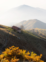 Panoramica Zegna (beppeverge) Tags: alba beppeverge bielmonte dawn fog landscape mist nebbia panoramicazegna prealpibiellesi sunrise