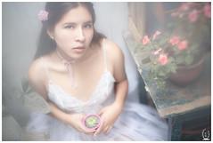 (Tc photography.Perú) Tags: 50mm canon portrait portraiture white soft purity face eyes plants nature tcphotography naturallight natural dream dreams