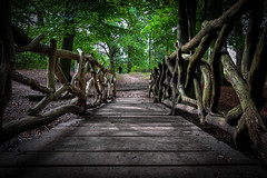 Bridge in park @ Zeist (PaulHoo) Tags: vignette vignetting 2016 bridge zeist holland netherlands lightroom fuji x70 park forest tree wood