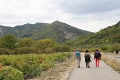 Sommet de la Plate-Pic du Comte_130 (randoguy26) Tags: beaumont ventoux mont plate comte vaucluse sommet pic