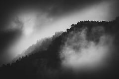 The Black Forest (dono heneman) Tags: fort forest noir noire black blackforest paysage landscape noiretblanc nb blackwhite silhouette nuage cloud brouillard brume fog myst nature ciel sky vgtal vegetal vgtation pyrnes montagne montain monochrome pentax pentaxart pentaxk3