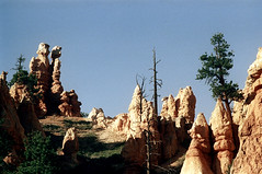 34-692 (ndpa / s. lundeen, archivist) Tags: nick dewolf nickdewolf color photographbynickdewolf 1970s 1973 film 35mm 34 reel34 utah southernutah southwesternunitedstates nationalpark brycecanyon brycecanyonnationalpark spires rock rocks rocky formation landscape terrain formations peaks outcropping outcroppings sky bluesky trees 1972