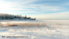 20160119089540 (koppomcolors) Tags: koppomcolors winter vinter värmland varmland sweden sverige scandinavia snö snow