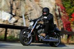 Harley-Davidson V-Rod 1610164754w (gparet) Tags: bearmountain bridge road scenic overlook motorcycle motorcycles goattrail goatpath windingroad curves twisties