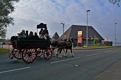 heading to the Brittania (napoleon666uk) Tags: liverpool international horse festival liverpoolinternationalhorsefestival horseshow echoarena animal parade