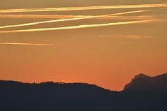 2.12.16. Blchen 16,38. (dreistrahler) Tags: luchs baselland eap swiss airshows zoobasel langeerlen zrh natur hunter fcbasel fasnacht blche