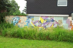 Moe (Ruhrgebiets Farben) Tags: graffiti 2002 b224 essen hall fame