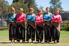 Indonesia-Emerging-3453 (jessdunnthis) Tags: indonesia australia design art futures peacock gallery emerging dance suara indonesian australian collaboration multiculturalism auburn