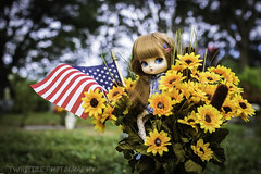 Among the Sunflowers (twilitize) Tags: adorable adventure art awesome beautiful beauty baby canon cute cutie camera cool canonphotography cemetery doll dolls dolly dollphotography darling daring girl girls girly good groove pullip pop popular pullips p pullipphotography playtime photography