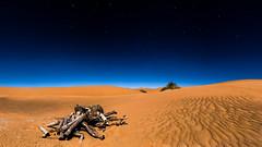 Sahara Desert (Zach Tyler) Tags: sahara desert travel morocco landscape canon stars sky earth