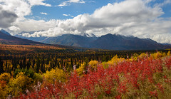 Glenn Highway Vista (Waldemar*) Tags: alaska usa glennhighway autumn fall foliage leaf leafs colors clouds mountains scenery scenic view vista outdoors outdoor nature landscape