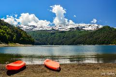 Conguillio Lake (leoleamunoz) Tags: nature parque park naturaleza clouds nubes lake lago water