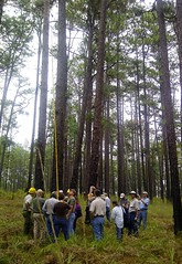 A group of people in a forest (USDAgov) Tags: fs forestry wildlife americanforestfoundation forests usfishandwildlifeservice
