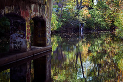 Down By The (Red Cedar) River (matthewkaz) Tags: redcedarriver river redcedar water reflection reflections underpass overpass road bridge grafitti art trees leaves color fall autumn msu michiganstateuniversity campus college collegecampus eastlansing inghamcounty michigan 2016
