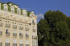 (Gselin) Tags: granda architecture spain trees summer bird building