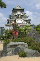 Vin voor Osaka castle