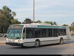 Durham Region Transit #8175 (vb5215's Transportation Gallery) Tags: bus nova durham 1999 transit region lfs drt exfirst