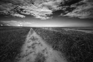 Un chemin sablonneux