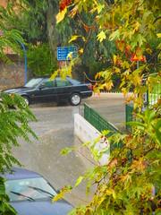 (Psinthos.Net) Tags: road trees storm cars water leaves car rain umbrella drops afternoon cloudy autumnleaves human eucalypt raindrops driver raining railings treebranches acacia wetroad planetree cloudiness      vrisi        rainingafternoon                        vrisiarea    vrisipsinthos